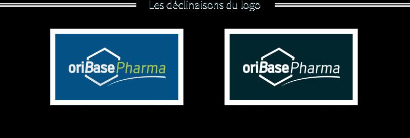 déclinaison du logo